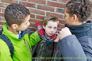 Physical Bullying in Boys, The Positive Parenting Centre